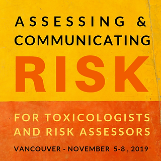 RISK COURSE LOGO JUNE 18 2019.png