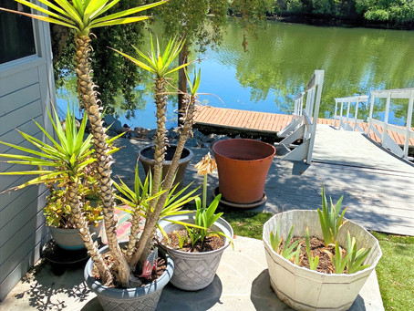 EOA is Hosting Two Estate Sales the Weekend of May 21