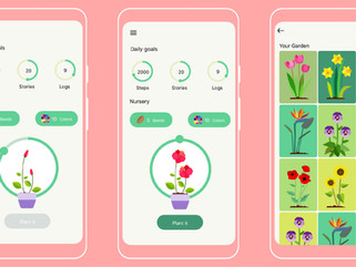 Gamifying Personal Health