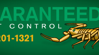 Gilbert, Arizona Pest Control - Best No Contract Pest Control