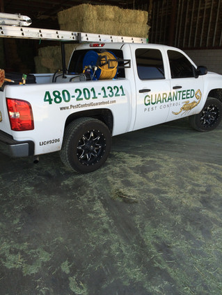 Best Pest Control Company in Gilbert Arizona - Pest Control No Contract – 85234 – Summer Pest Contro