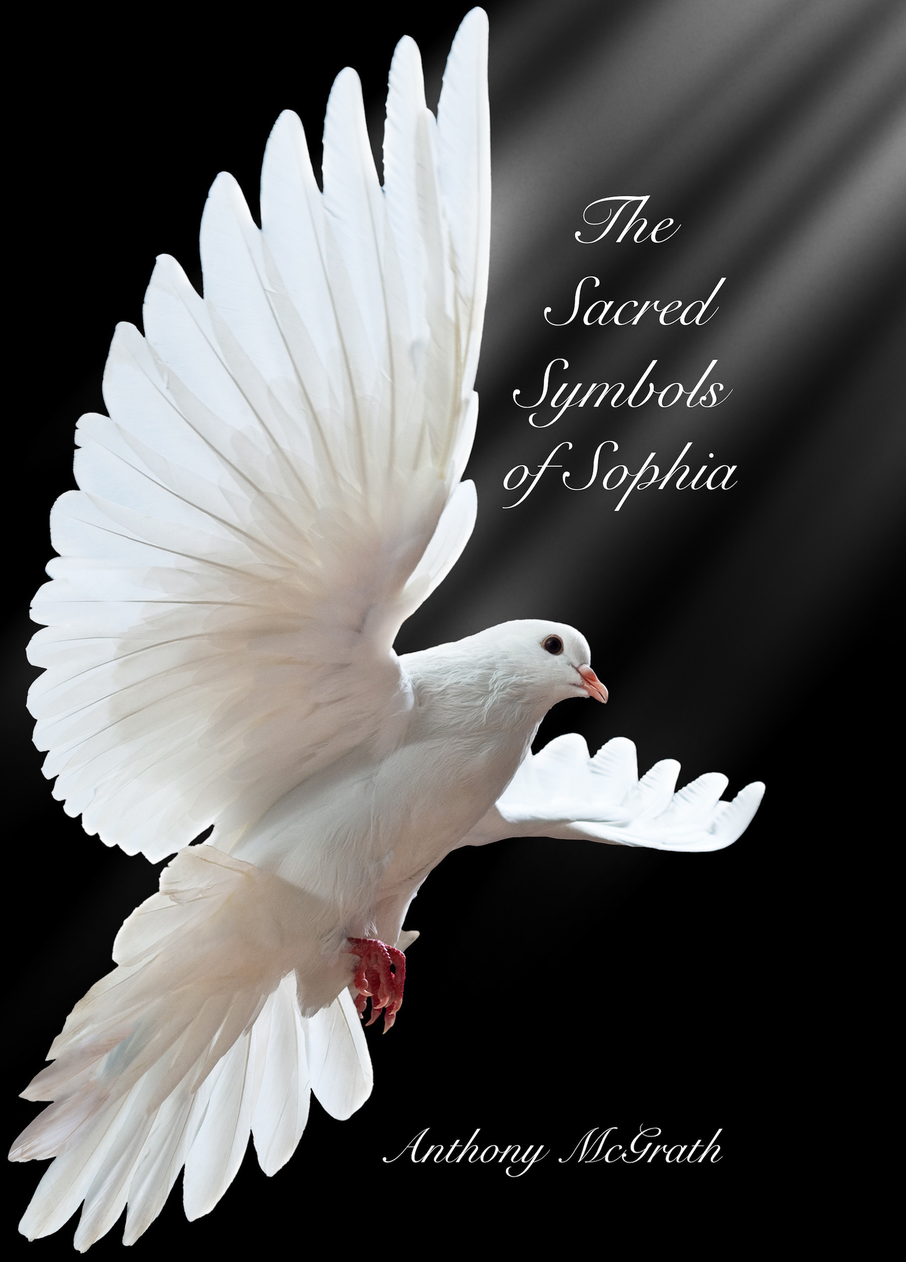 Sacred Symbols of Sophia WS One