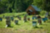 туры на квадроциклах москва,туры на квадроциклах московская область,прокат квадроциклов в рязанской области,прогулки на квадроциклах в рязани,покататься на квадроциклах в рязанской области,квадроциклы рязань,отдых на квадроциклах в рязани,тур на квадроциклах в рянскую область