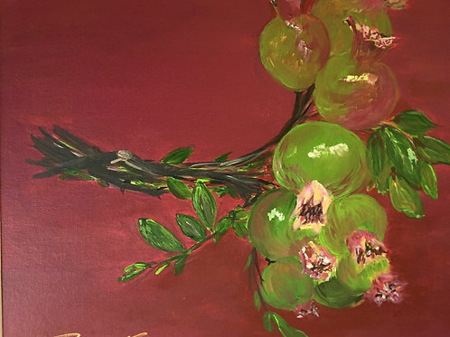 Green Pomegranates - Still Life