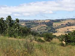Garland Ranch, Carmel Valley