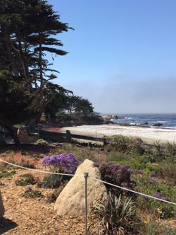 Beach Path Carmel