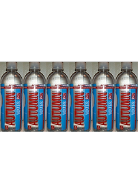 Real AW Bottle 6 Pack.png