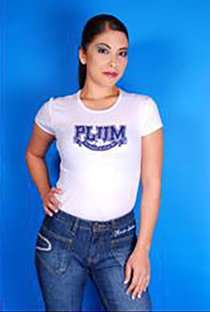Plum Denim Shirt Collage Blue
