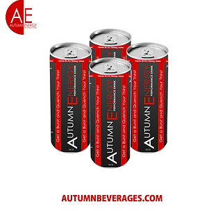 Autumn Energy Performance Drink 4 Cans.j