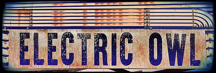 ELECTRIC OWL.jpg