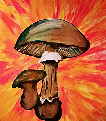 MUSHROOMS : SOLD