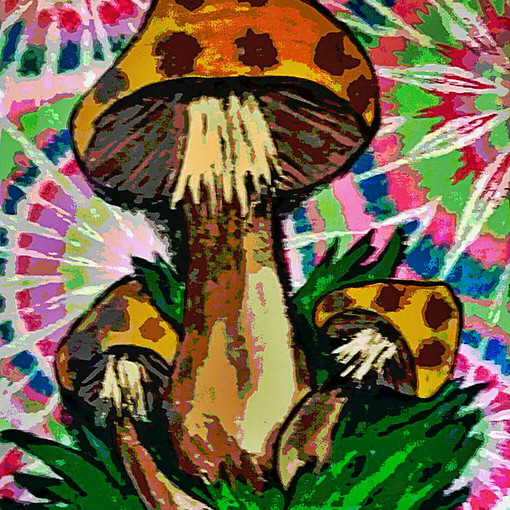 PSYCHEDELIC SHROOMS : $15