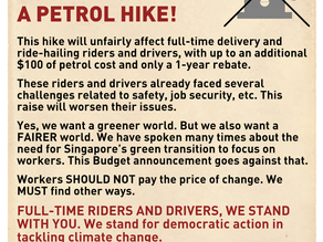 We Are Environmentalists But We Don't Want A Petrol Hike!