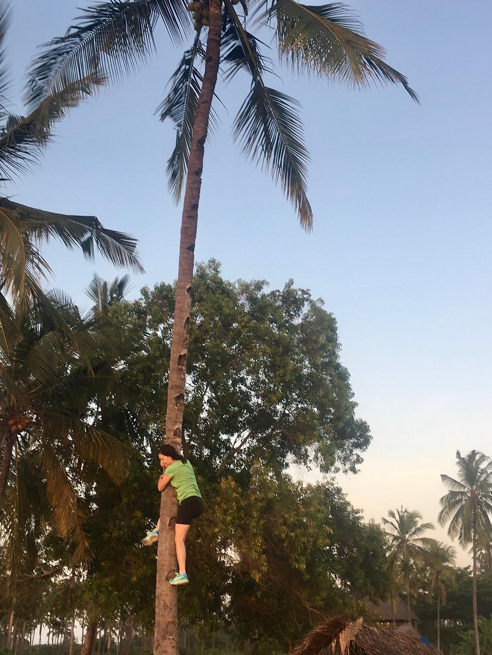 Terri Climbing the coconut tree