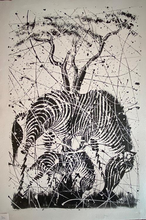 Splattered Zebra