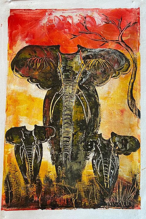 Approaching Elephant family