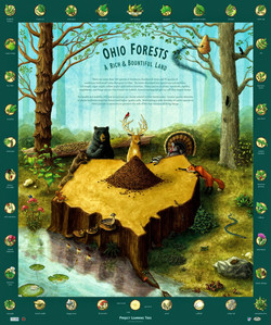Ohio Forests Biodiversity