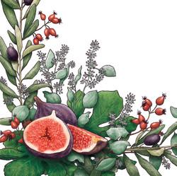 Fig & Greenery Invite Close Up