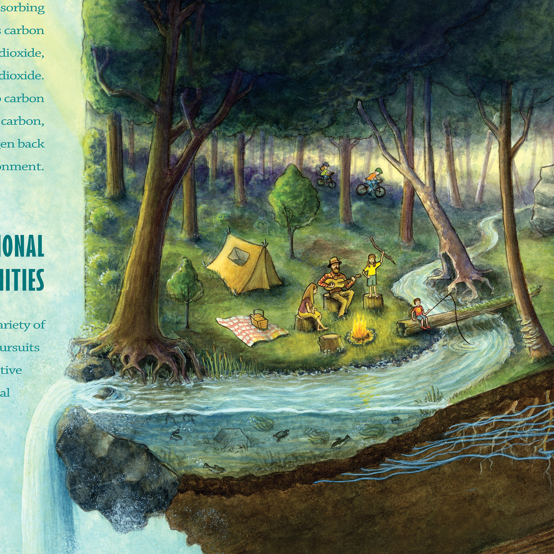 Forest Benefits Poster Close Up