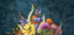 Ohio Pollinators web header.jpg