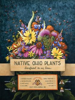 Ohio Pollinators