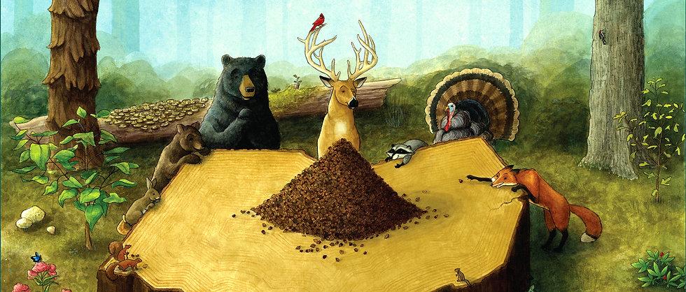 Biodiversity Poster Banner
