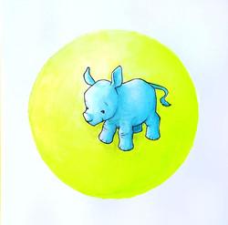 Baby Rhino close up