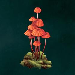 Orange Pinwheel Mushroom
