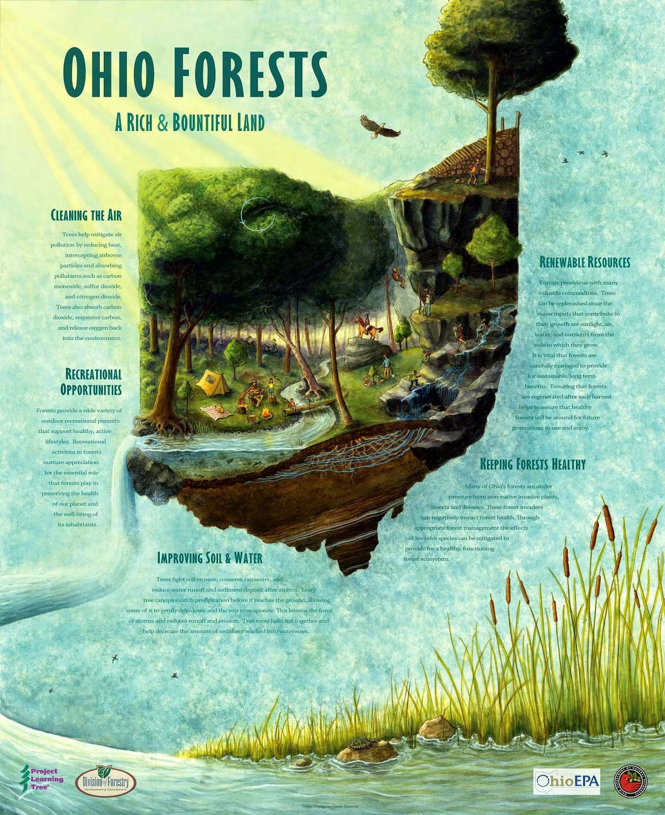 Ohio Forests Benefits