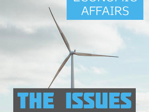 Economic Affairs: the issues