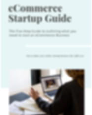 eCommerce startup guide.png