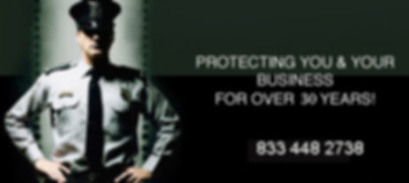 Security-Guard-Service2.jpg
