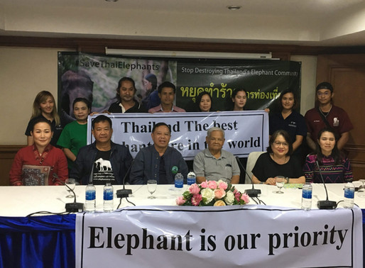 Elephant experts respond to new zealand media attack