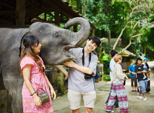 With crisis comes opportunity: Will elephant-based tourism reset itself post COVID-19?