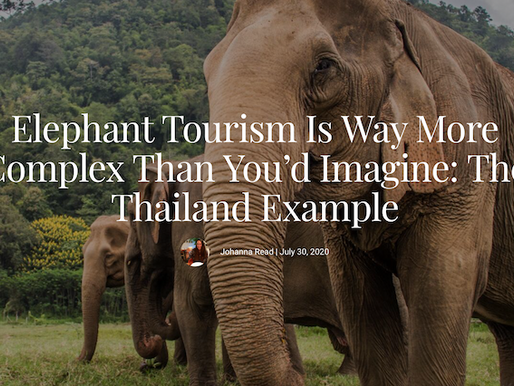 Fodor's Travel highlights the complex issues surrounding elephant tourism.