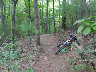 Ride Report: Cohutta Wilderness