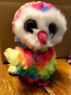 6_ Beanie Boo Owl, New