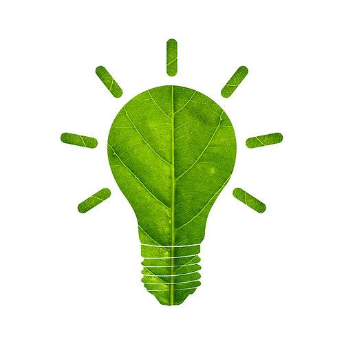 Light bulb made of green leaf eco energy