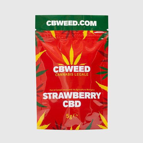 Strawberry CBD – 5g (Cannabis Light Cbweed)