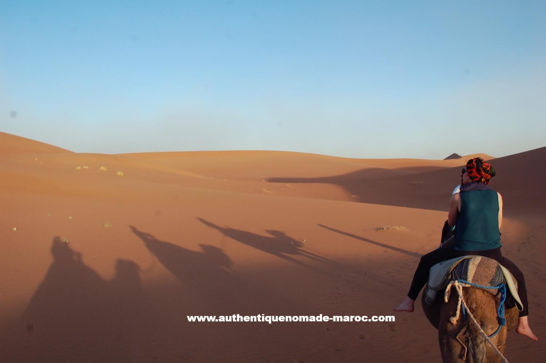 balade dromadaire désert
