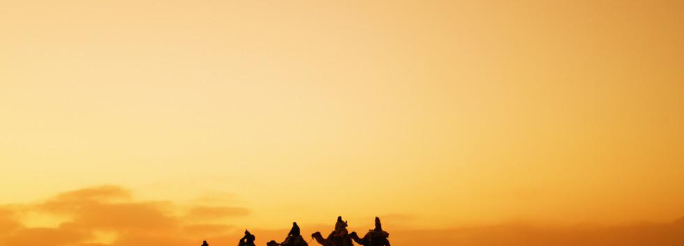 balade dromadaire désert maroc