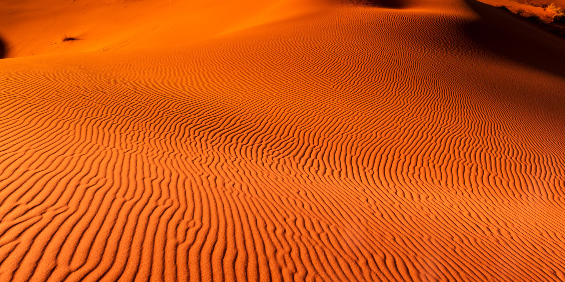 Dunes of Erg Chebbi, Sahara Desert, Moro
