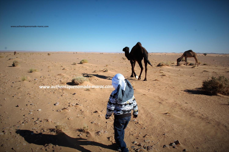 désert merzouga