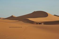 dunes chegaga