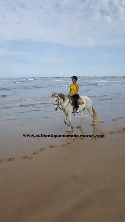 balade à cheval essaouira