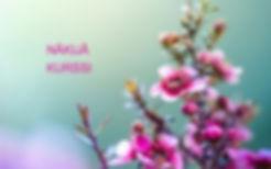 fondos-de-pantalla-de-flores-02_edited_e