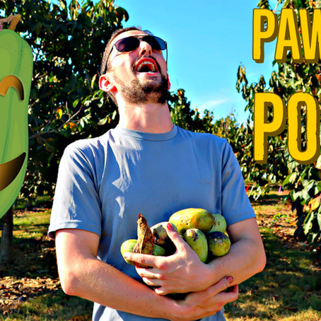 KSU's Paw Paw Power:  World-renowned Innovation & Research in Frankfort, KY