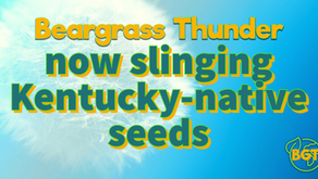 Beargrass Thunder is now an officially licensed local nursery on a mission to sling KY-native seeds!