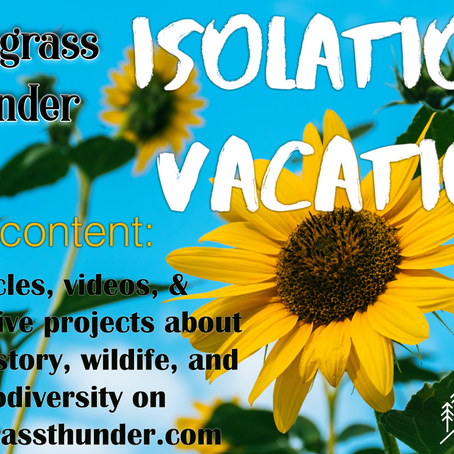 Isolation Vacation: Beargrass Thunder [PHASE TWO]