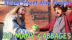 Roland Street Alley Project: Autumn Update